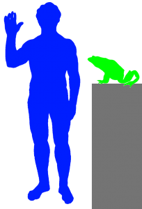 Goliath Frog and Human
